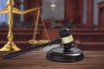 鉴定人员出庭质证程序