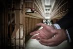 刑案选择鉴定机构程序
